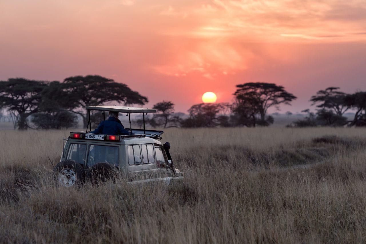 safari namibie vakantie canada