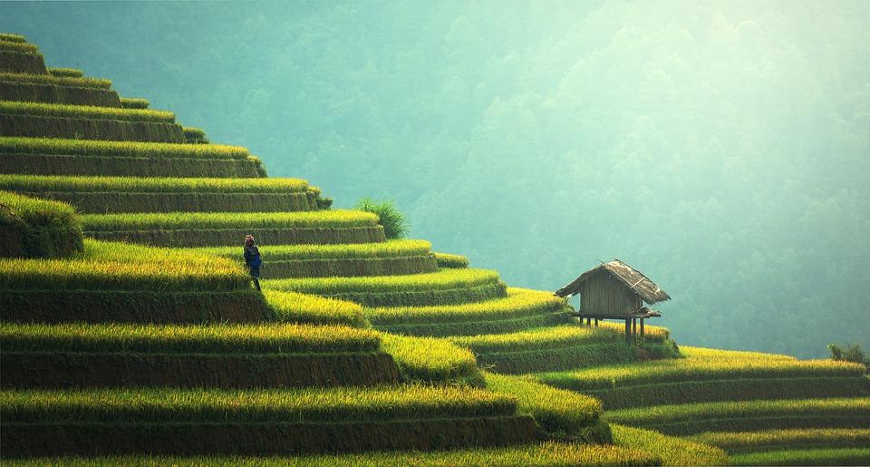 Een geweldige reis in Bali